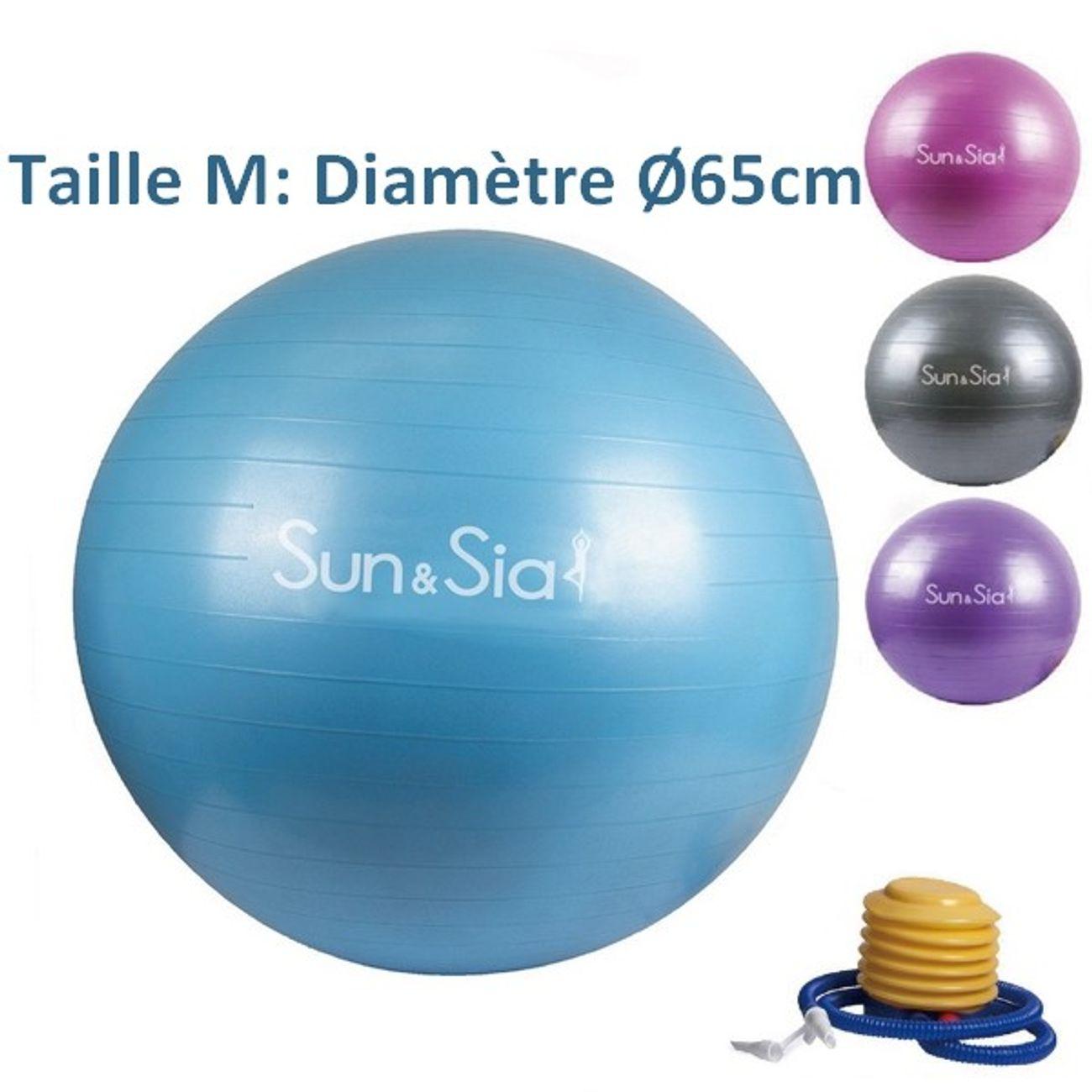 ballon de gym yoga bleu - taille 65 cm - fitness – achat et prix pas