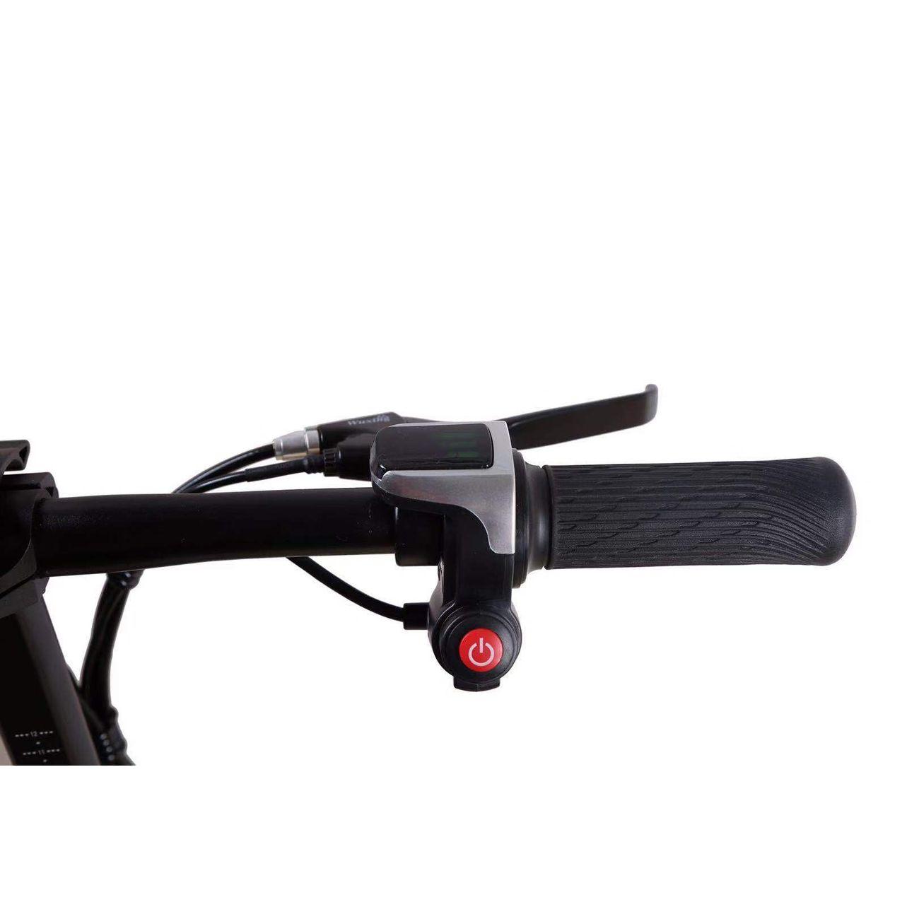 AIR RISE Vélo électrique pliable 350W 48V 10AH lithium-ion Alliage d'aluminium