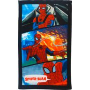 DDP SPIDERMAN 75x150