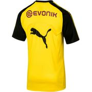 DORTMUND TRAINING TOP 17