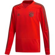 BAYERN TRAINING TOP ML JR 18