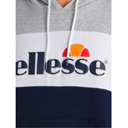 GUSTAVE SWS HOODIE TRICOL GRIS