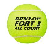 BALLON Tennis  DUNLOP DUNLOP FORT ALL COURT TS