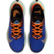 CHAUSSURES BASSES running homme NIKE NIKE PEGASUS TRAIL 2 GTX
