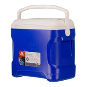 Igloo Coolers Contour 30