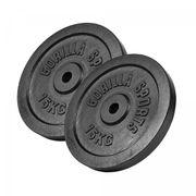 Gorilla Sports - Lot de 2 x 15kg en fonte noir de diamètre 31mm