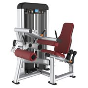 Care Seated Leg Curl - C-PRO