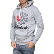 Sweat Reebok F Star Hoody Dh2074 Gris
