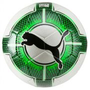 Ballon Puma EvoPower 2.3 taille 5