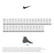 Chaussures Nike Tanjun TDV gris blanc enfant
