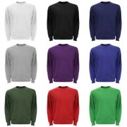 Sweatshirt Fruit Of The Loom pour homme