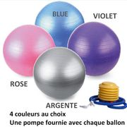 Ballon de Yoga Rose Taille S 55 cm - Fitness
