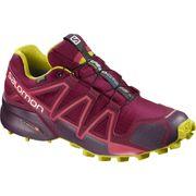 Chaussures femme Salomon Speedcross 4 GTX