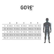 GORE RUNNING WEAR® - R3 GTX Active Hommes veste de course (bleu)