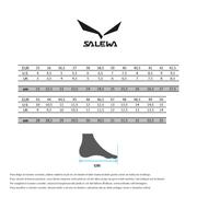 Chaussures Salewa MTN Trainer GTX marron