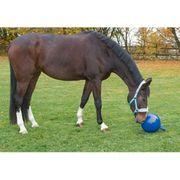 Kerbl Balle de jeu pour chevaux Bleu 25 cm 32399