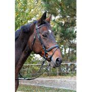 Kerbl Bridon pour poneys Classic Cuir Noir 326137