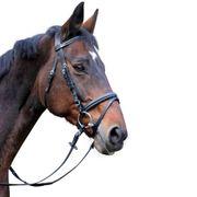 Kerbl Bridon pour Cobs Classic Cuir Noir 326138