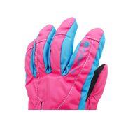 Leo rose gants ski g