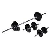 vidaXL Kit de barre d'haltère et 2 haltères 30,5 kg