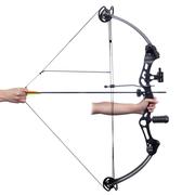 vidaXL Arc à poulies pour adulte avec accessoires + flèches en fibre de verre