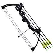 vidaXL Arc à poulies pour adolescent avec accessoires et flèches en aluminium