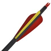 vidaXL 12 flèches standard en carbone 30