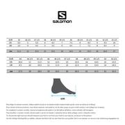 Chaussures Salomon XA Elevate GTX gris bleuté jaune
