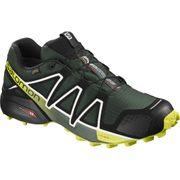 Chaussures Salomon Speedcross 4 GTX