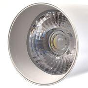 Lampe pour croissance plante-30W COB Rail Projecteurs à Lampe, 3000-3500K 3000 LM LED de Suivi Luminaire Spot Ampoule pour le Ma