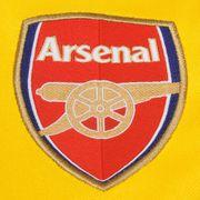 2014-2015 Arsenal Puma Pre-Match Top (Yellow-Blue)