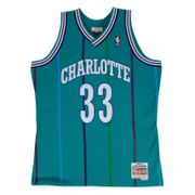 Maillot NBA Alonzo Mourning Charlotte Hornets 1992-93 Mitchell & ness Hardwood Classic swingman Bleu Taille - S