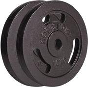 Poids disques en fonte 20 kg (2x10 kg) Hop-Sport