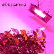 Lampe pour croissance plante-50W IP65 Imperméable LED COB de Croissance des Végétaux, de la Lumière, 3000-4000LM 380-800NM à eff