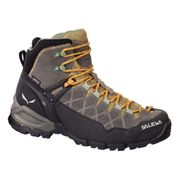 Chaussures Salewa Alp Trainer GTX marron orange femme
