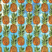 No Publik - Short De Bain Enfant Pineapple