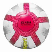 Ballon de football Uhlsport Elysia Pro Training 2.0