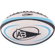 Ballon de rugby Gilbert Bayonne (taille 5)