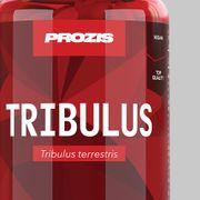 Tribulus Terrestris 1000mg 90 tabs - Naturel