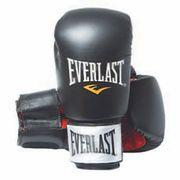 Everlast Equipment Leather Boxing Gloves Fighter