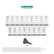 Chaussures de marche Lowa Renegade GTX Mid noir femme