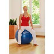 Sissel Ballon d'exercice 65 cm Bleu SIS-160.063