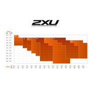 2XU Compression Tights