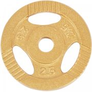 Gorilla Sports - Poids disques en fonte - 31 mm - or