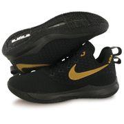 Chaussures Lebron Witness Iii