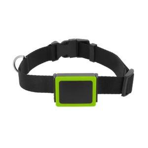 Objet connécté - high tech  weenect Weenect Pets - Balise GPS pour Chien