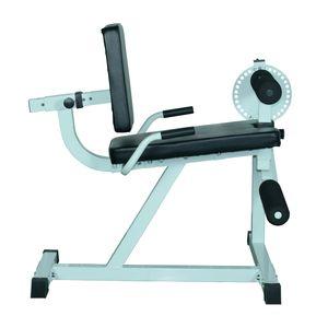 Musculation  HOMCOM Appareil de Fitness musculation des jambes flexion extension dossier et résistance réglable 113L x 95l x 99H cm gris et noir neuf 36