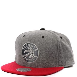 Mode- Lifestyle homme MITCHELL & NESS Raptors Homme Snapback Basketball Gris Mitchell & Ness